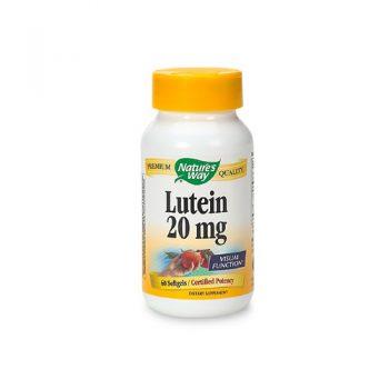 Quisque feugiat sapien Lutein 20 mg